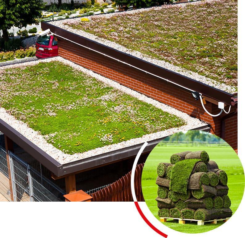 Producent trawy w rolkach i zielonych dachów